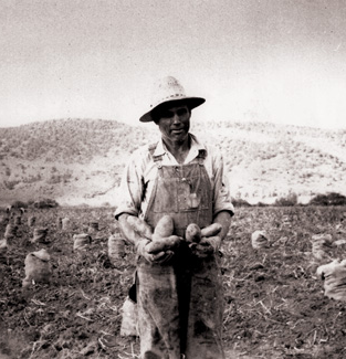 Potato-Days-historical-photo-2.png